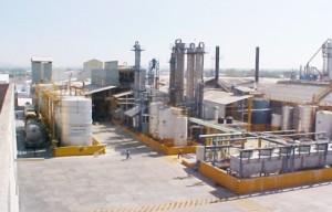 sectores de produccion2